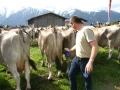 braunviehzuchtausstellung-100-jahre-vzv-2012_020