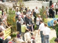 braunviehzuchtausstellung-100-jahre-vzv-2012_115