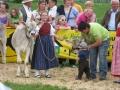 braunviehzuchtausstellung-100-jahre-vzv-2012_168