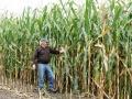 """Der Mais wird geerntet – """"So gut war der noch nie"""""""