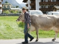 braunviehzuchtausstellung-100-jahre-vzv-2012_015