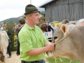 braunviehzuchtausstellung-100-jahre-vzv-2012_053