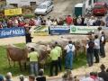 braunviehzuchtausstellung-100-jahre-vzv-2012_101