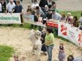 braunviehzuchtausstellung-100-jahre-vzv-2012_113