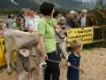 braunviehzuchtausstellung-100-jahre-vzv-2012_129