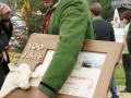 braunviehzuchtausstellung-100-jahre-vzv-2012_149